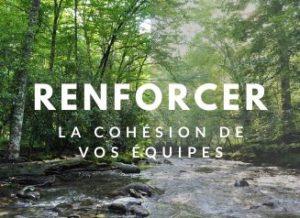 renforcer-teambuilding-locadventure