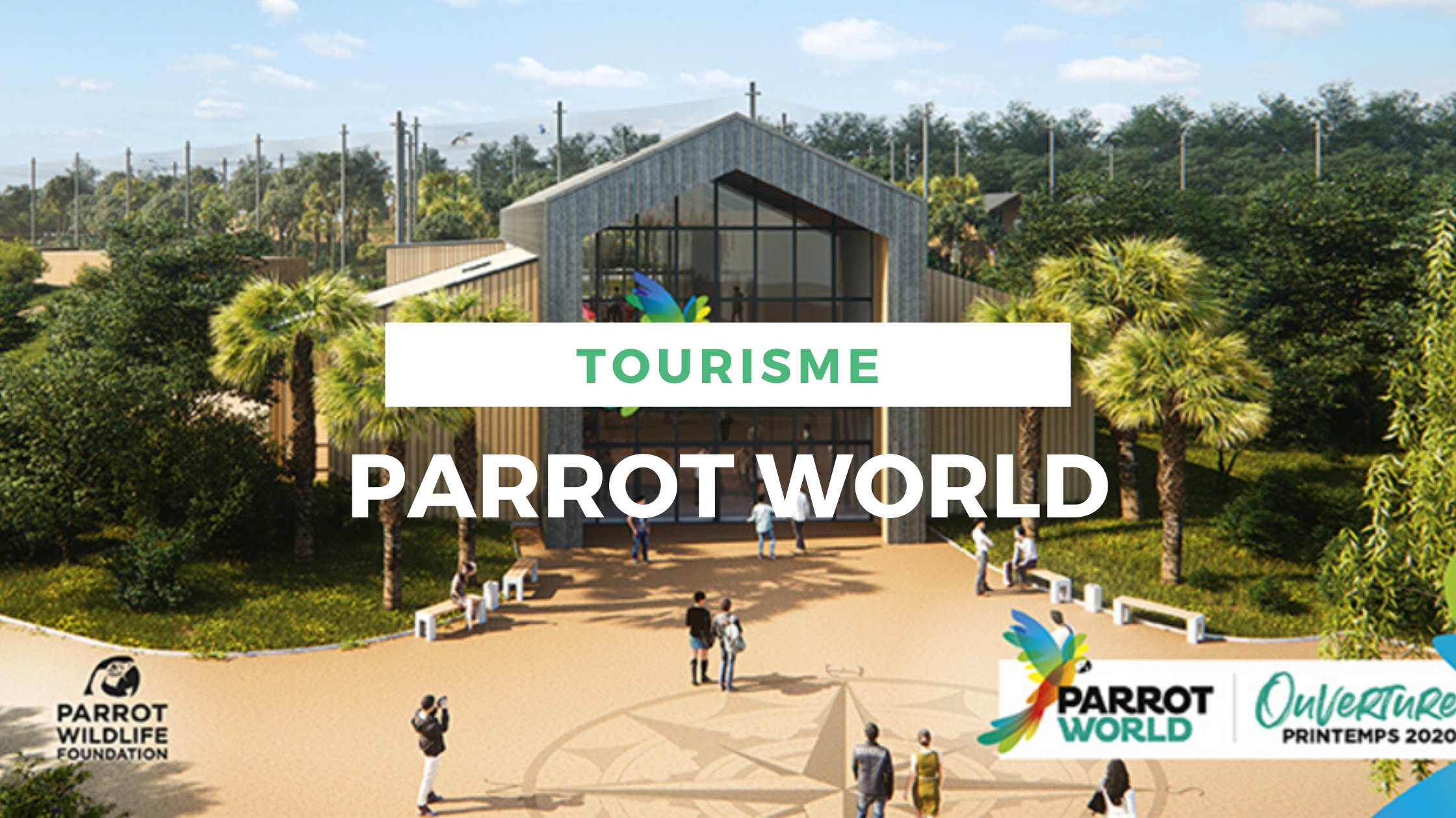 article-parrot-world-locadventure