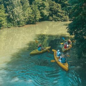 694x442-location-canoe-kayak-arbres-locadventure